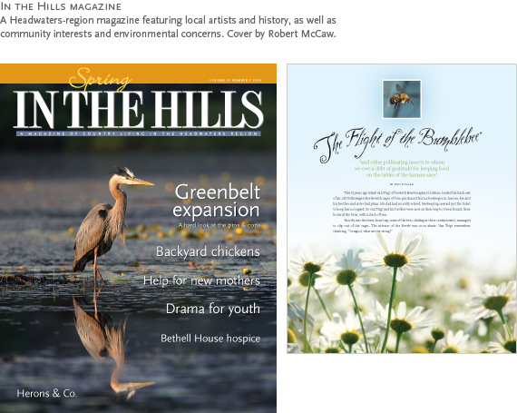 In the Hills Magazine : A Headwaters-region magazine featuring local artists and history, as well as community interests and environmental concerns. Cover by Robert McCaw.