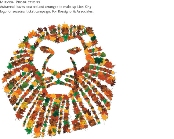 Mirvish Productions : Autumnal leaves sourced and arranged to make up Lion King logo for seasonal ticket campaign. For Rossignol & Associates.